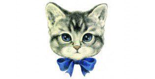 Varo_cat-285x330