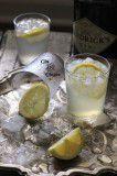 1112 (1)-2 ginger syrup