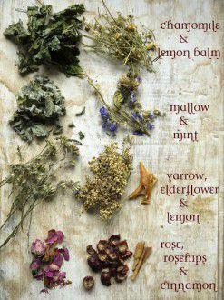 1119 (2)-3 herbal tea