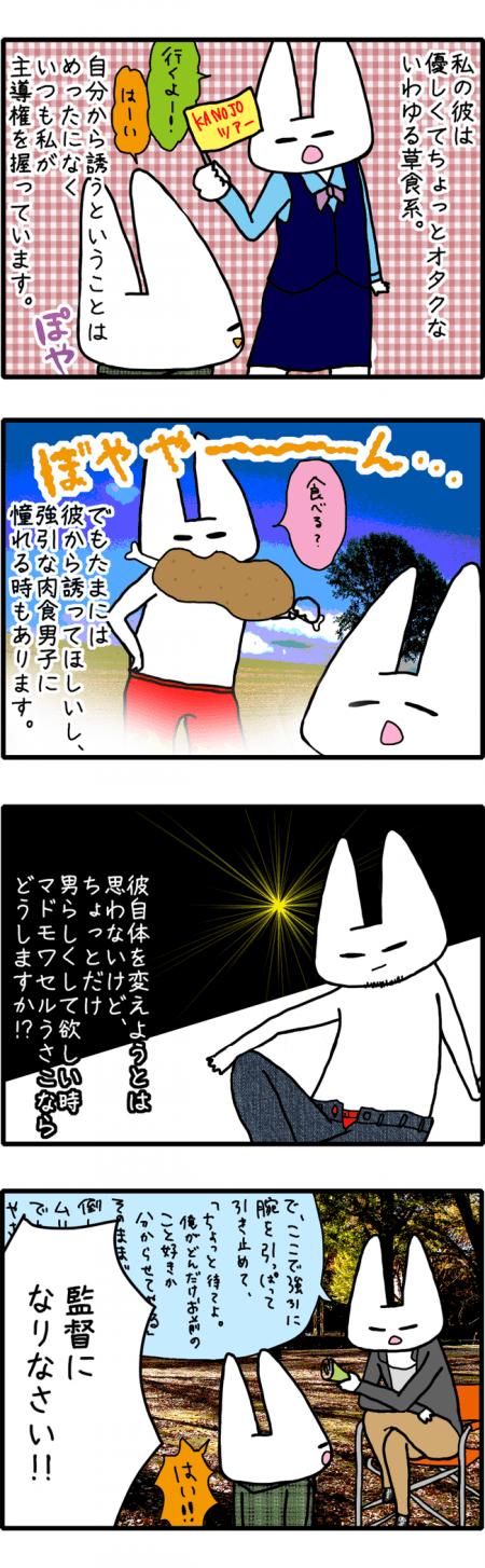 usa080