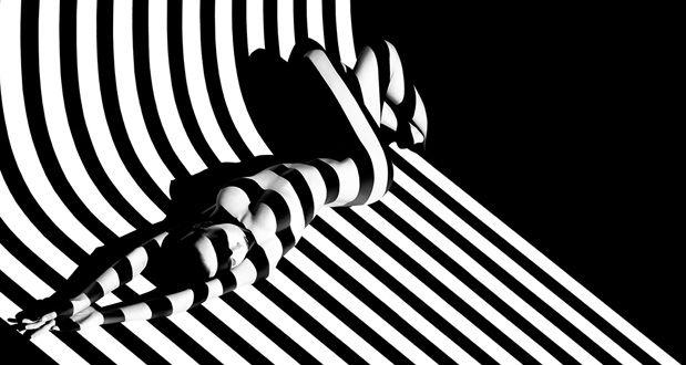 Giacobetti-zebra