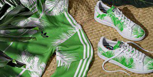 BBC Palm Tree Pack (4)_cach