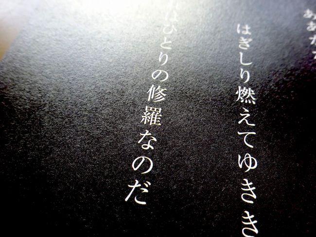 DSC05088