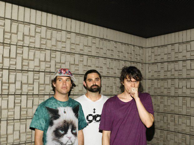 animalcollective1