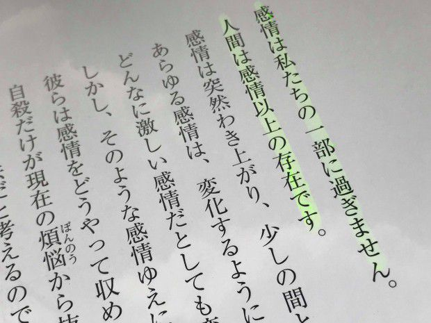 MeisaFujishiro