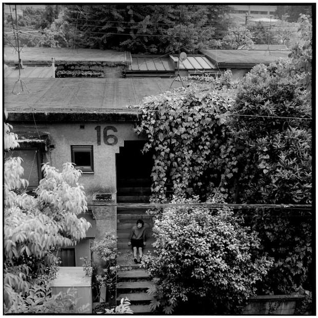 herbie_yamaguchi_2
