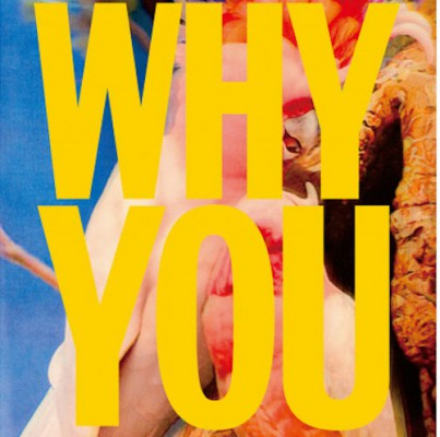 WHY-YOUのコピー